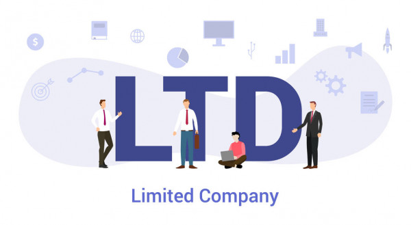 Private Limited Company Agency India